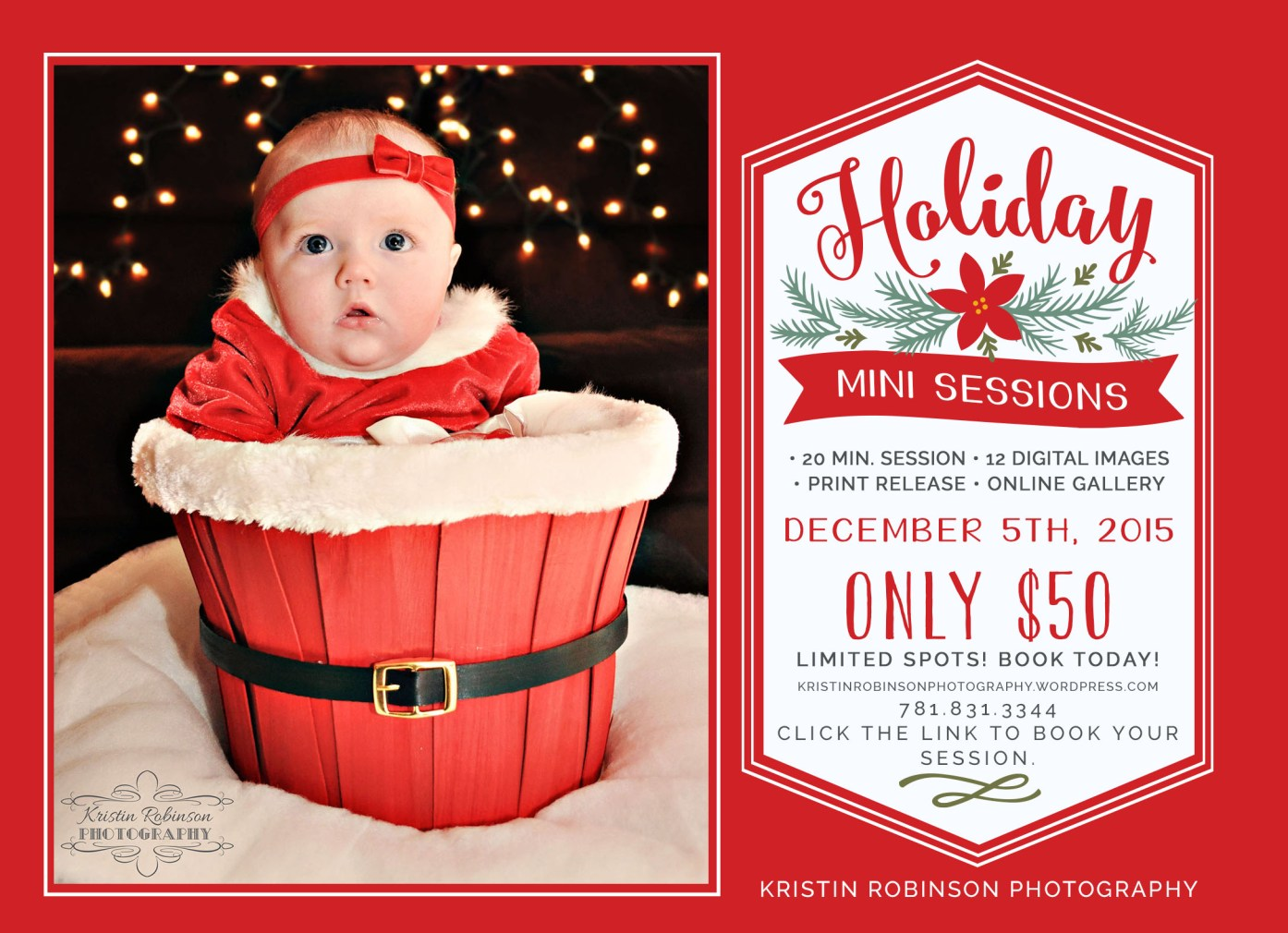 holiday mini sessions with online payments option