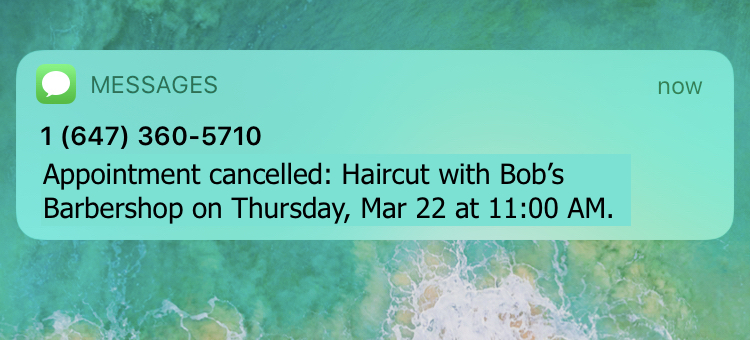 appointment cancelled text reminder