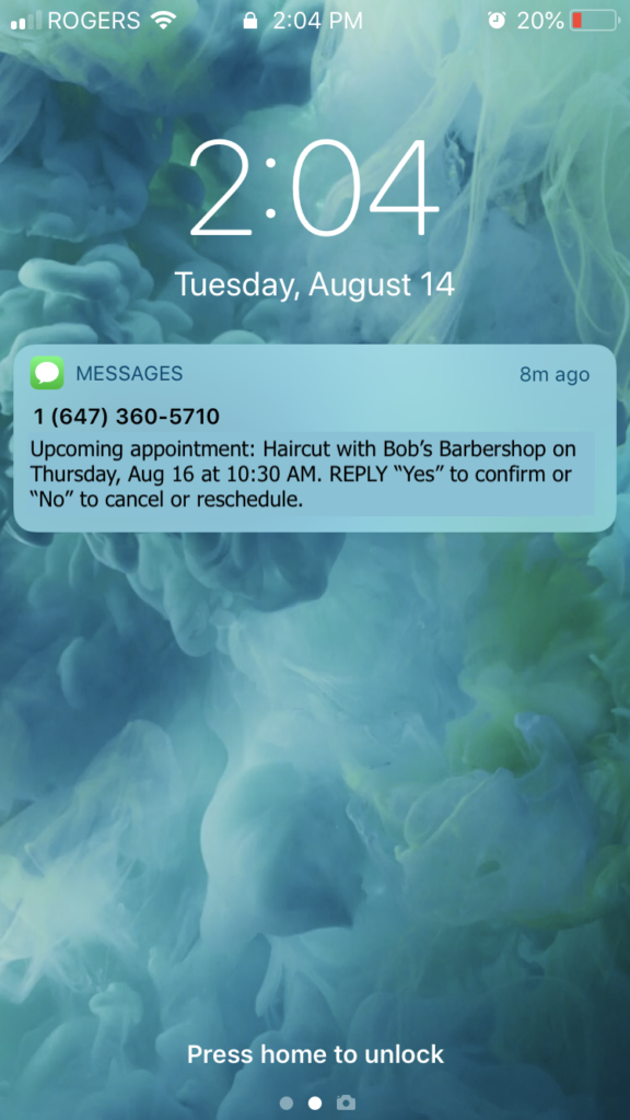 automatic appointment text message reminders