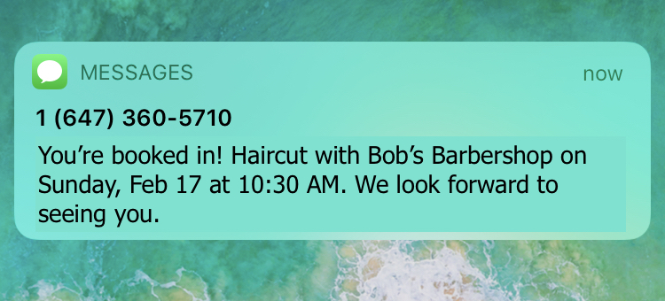 appointment booked confirmation text message
